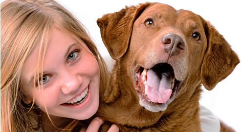 Honden zijn gevoelig voor toon menselijke stem