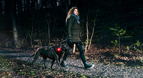 Make your dog more visible in the dark