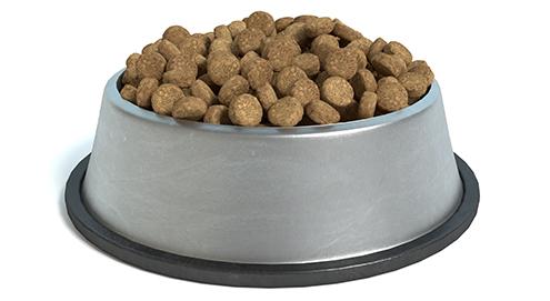 Voedselallergie bij hond en kat