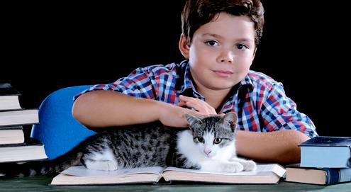 Vorlesen ist gut für Kinder und Katzen