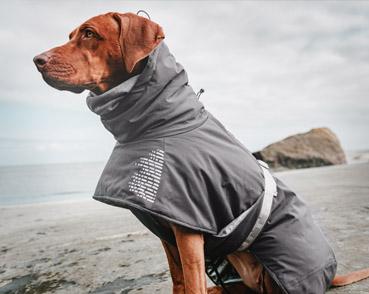 Dog Coats & Clothing