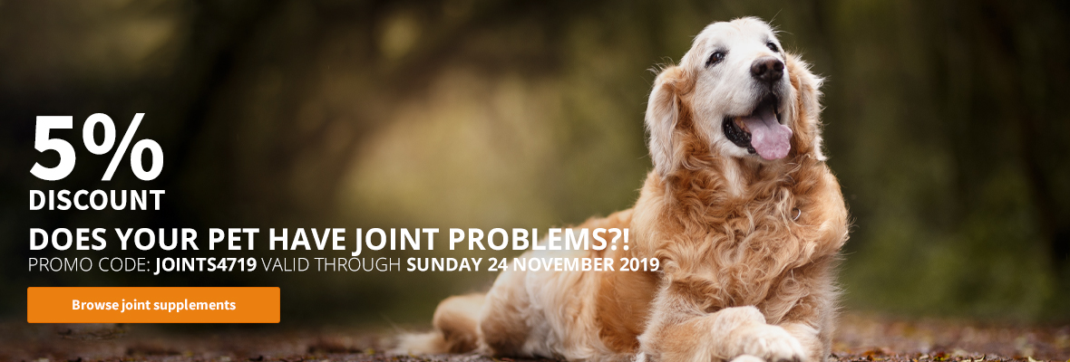 joint supplements dogs