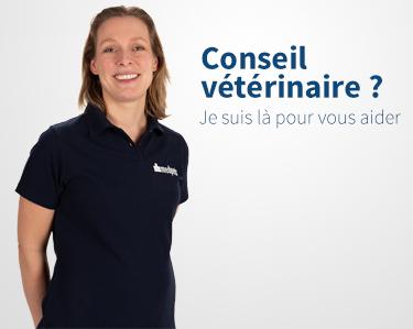 Conseil vétérinaire gratuit par Medpets