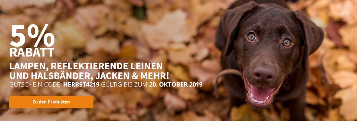 Herbst Produkte für Hunde