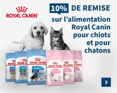 10% de remise sur lálimentation Royal Canin pour chiots et pour chatons