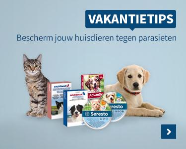Bescherm je huisdier tegen parasieten!