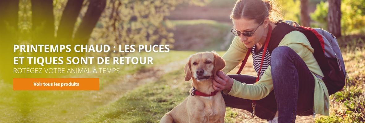 Protegez votre animal les puces et tiques