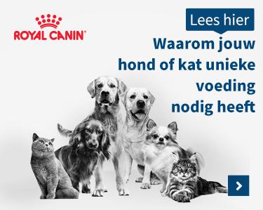 Unieke voeding van Royal Canin