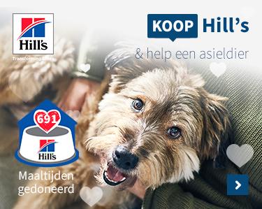Koop Hill\\\'s help een asiel dier!