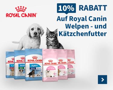 10% Rabatt Auf Royal Canin Welpen - und Katzchenfutter