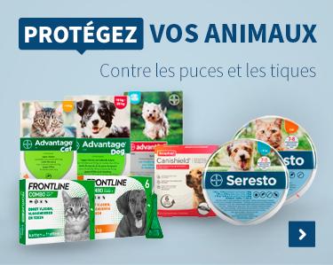 Protegez Vos Animaux Contre les puces et les tiques