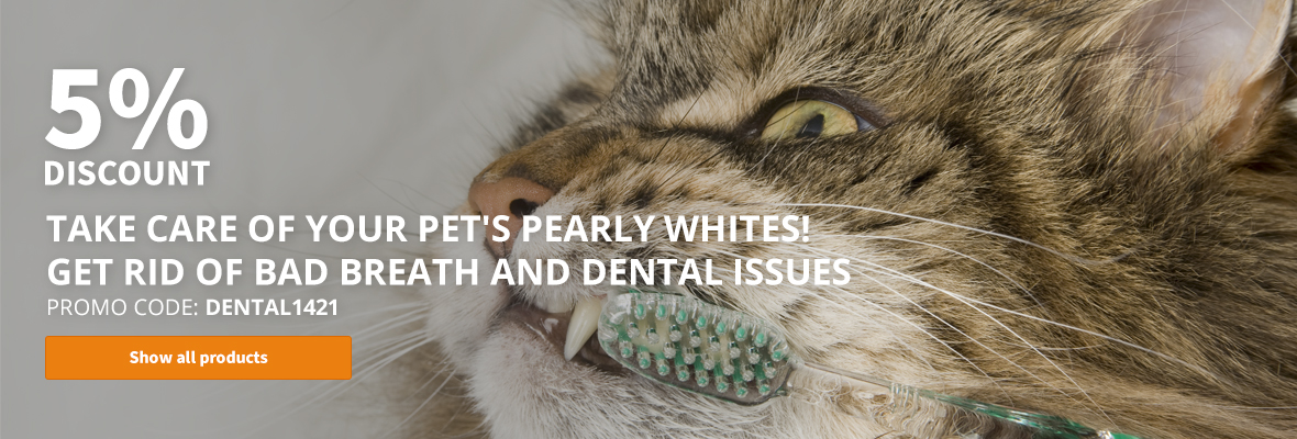 5% discount on all dental care products