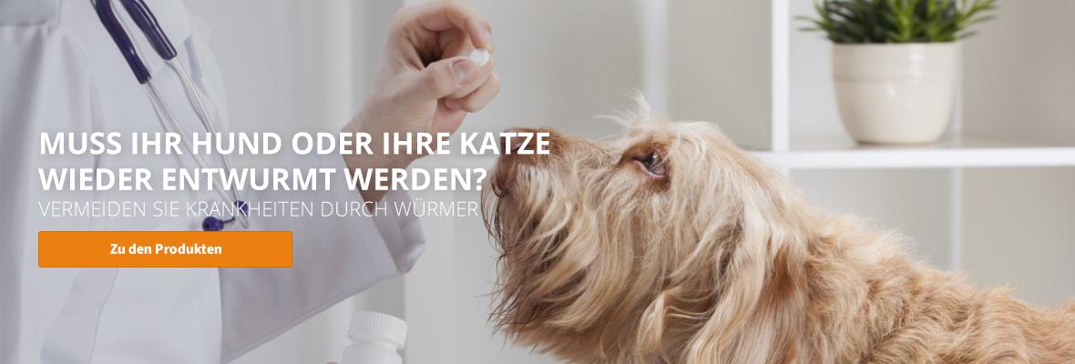 Wurmkuren für Hunde & Katzen