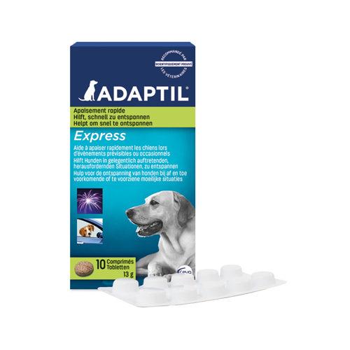 Adaptil Express Comprimés (DAP)