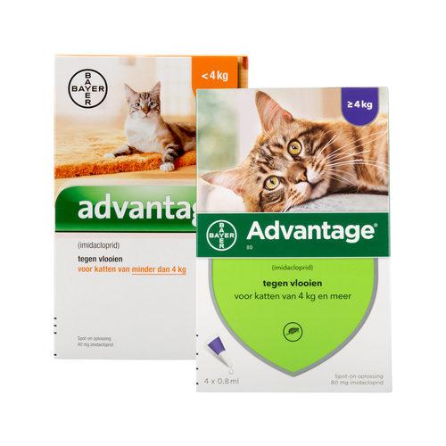 Advantage Kat