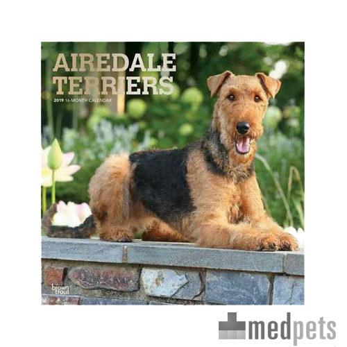 Product afbeelding van Airedale Terrier Kalender 2019