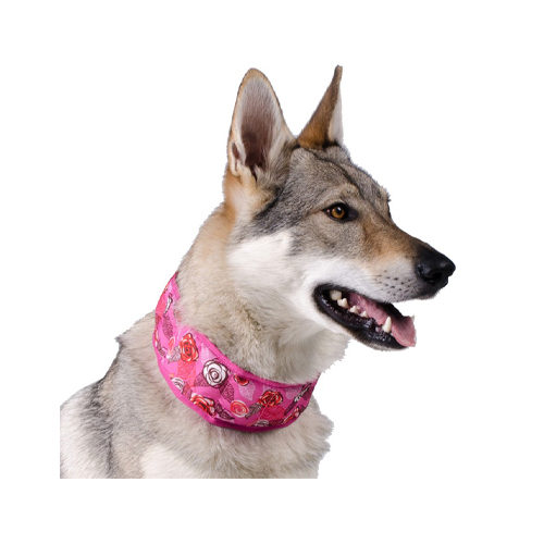 Aqua Coolkeeper Cooling Collar Cooling Off Buy