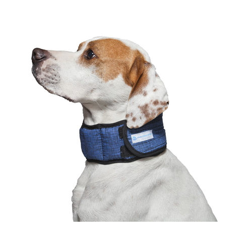 Aqua Coolkeeper Halsband