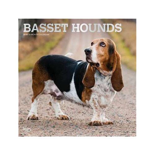 Basset Hounds Kalender 2019
