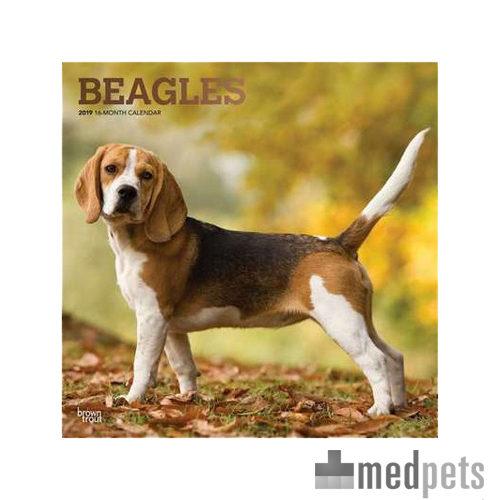 Product afbeelding van Beagles Kalender 2019