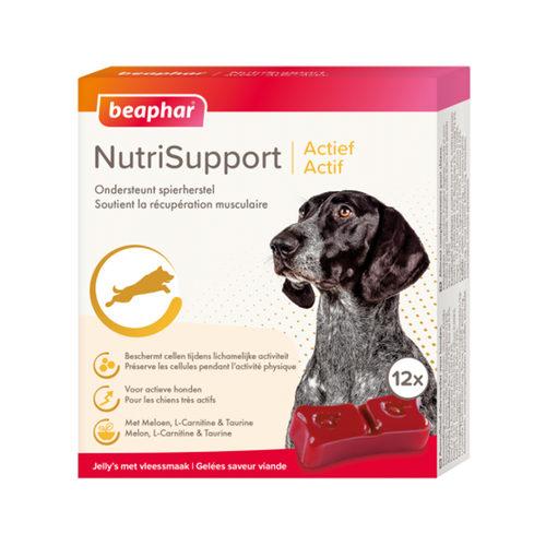 Beaphar NutriSupport Actief Hond