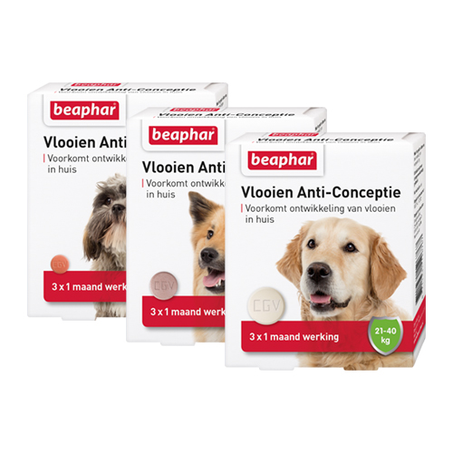 Beaphar Flea Anti-Conception for Dogs
