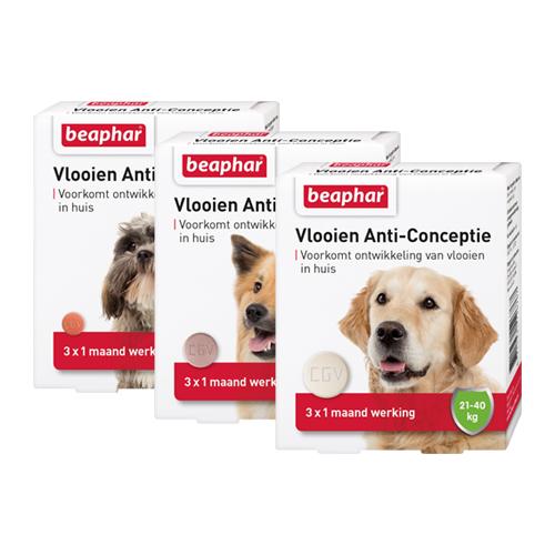 Beaphar Flohschutz für Hunde
