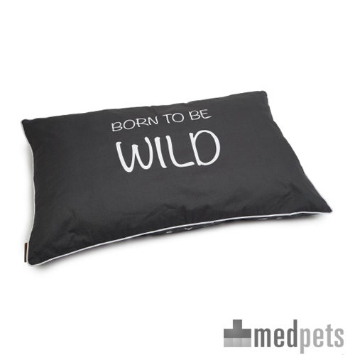 Produktbild von Beeztees Born To Be Wild Loungekissen