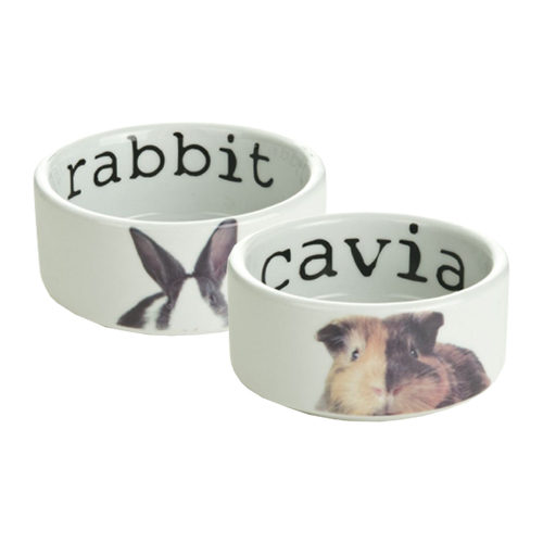 Beeztees Snapshot Food Bowl
