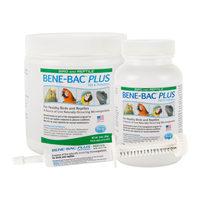 Bene-Bac Plus Oiseaux & Reptiles