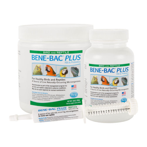 Bene-Bac Plus Bird & Reptile