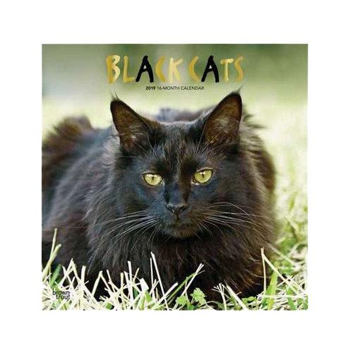 Black Cats Kalender 2019