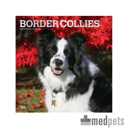 Product afbeelding van Border Collie Kalender 2019