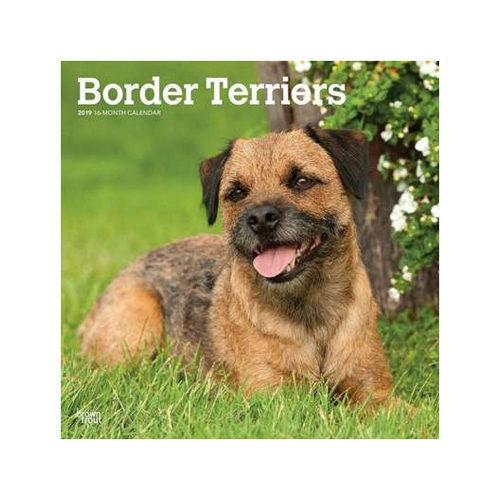 border terrier kalender 2019 hond bestellen. Black Bedroom Furniture Sets. Home Design Ideas