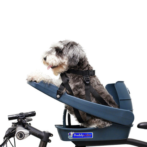 Buddyrider Fahrradsitz