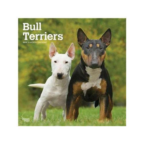 Bull Terrier Kalender 2019