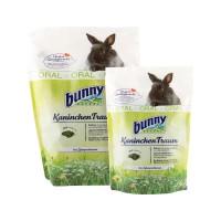 Bunny Nature Rabbit Dream Oral