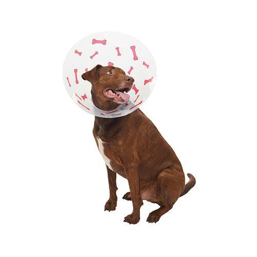 Buster Hundehalskrause Design Bones