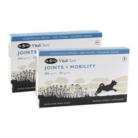 Buster VitalChew Joints & Mobility