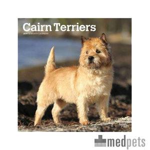 Product afbeelding van Cairn Terrier Kalender 2019