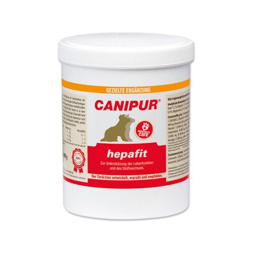 Canipur Hepafit