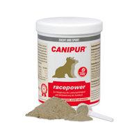 Canipur Racepower