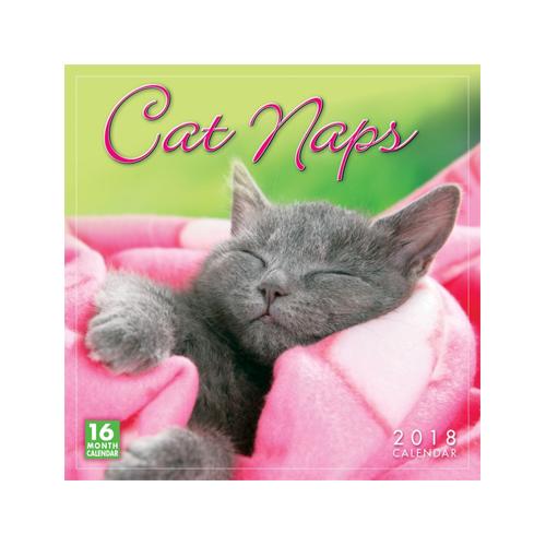 Cat Naps Kalender 2018