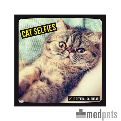 Product afbeelding van Cat Selfies Kalender 2019
