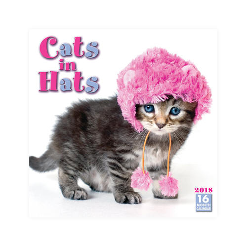 Cats In Hats Kalender 2018