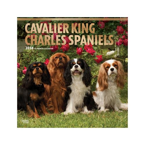 Cavalier King Charles Spaniels Kalender 2019