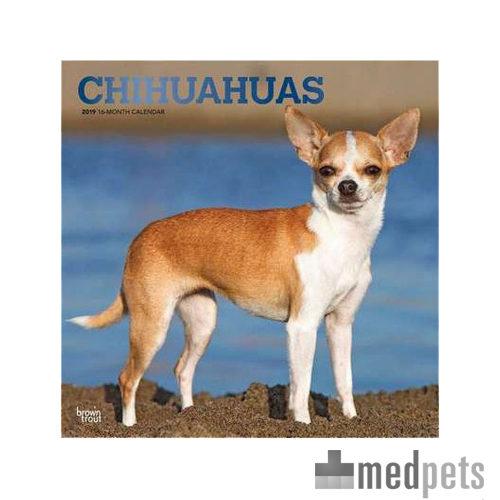 Product afbeelding van Chihuahua Kalender 2019