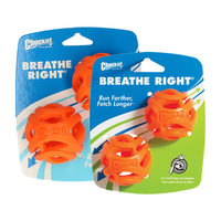 Chuckit! Breathe Right Fetch Ball
