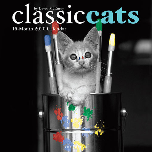 Classic Cats Calendrier 2020 (Chats)