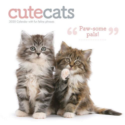 Cute Cats Calendrier 2020 (Chats Mignons)